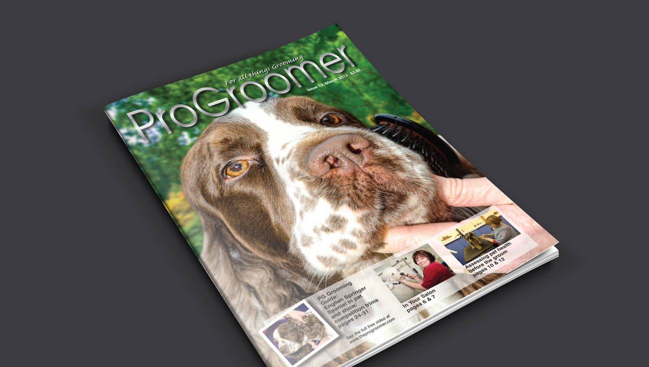 ProGroomer Magazine design by CS Creative Studio