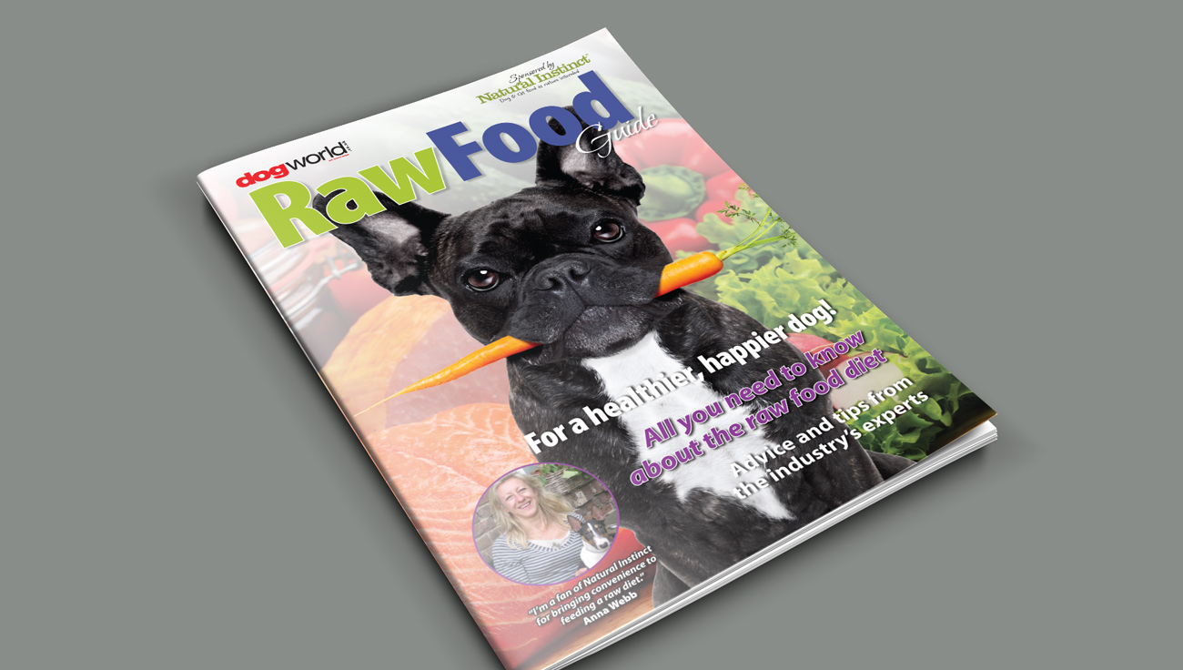 Raw Food Guide for Dog World design by CS Creative Studio